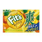 ロッテ Fits(爽 金のパイン味)12枚入