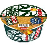 【9/22(火)~9/23(水)配送】日清食品 どん兵衛 きつねうどんミニ(東)42g