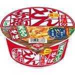【9/22(火)~9/23(水)配送】日清食品 どん兵衛 天そばミニ(東)46g