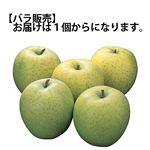 青森県 などの国内産 りんご(王林)2Lサイズ 1個