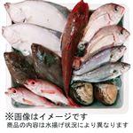 【予約商品】【12月3日~12月5日の配送となります】 福島鮮魚便 おさかなセット 大