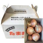 【予約商品】【12月11~13日の配送となります】 兵庫県産 淡路島たまねぎ 3kg 1箱