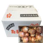 【予約商品】【12月11~13日の配送となります】 兵庫県産 淡路島たまねぎ 5kg 1箱