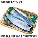 青森県産原料使用 塩さば 4枚入 1パック【10/24(日)までの配送】