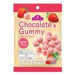 トップバリュ いちごチョコ&グミ ストロベリー 40g
