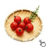 トップバリュ グリーンアイ オーガニック 熊本県などの国内産 ミニトマト 100g 1パック