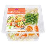 トップバリュ 5種類の野菜が入った塩だれ肉野菜炒めキット 1パック