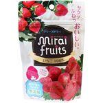 【9ヶ月頃~】ミライフルーツ イチゴ 10g