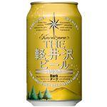 日本 THE軽井沢ビール ダーク 350ml