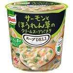 味の素 クノール スープDELIサーモンとほうれん草 40.3g