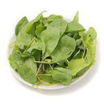 国産 緑黄色野菜サラダミックス 25g