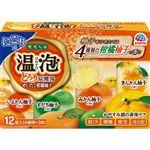 アース製薬 温泡 ONPO とろり炭酸湯 ぜいたく柚子柑橘 12錠(4種類×3錠)