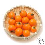 国産 カゴメ ベータカロテントマト 180g