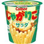 【1/26(火)~1/27(水)配送】カルビー じゃがりこサラダ 60g