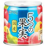 加藤産業 カンピー 国産 5つの果実 195g