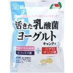 佐久間製菓 活きた乳酸菌ヨーグルトキャンディ 90g