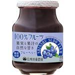 スドージャム 信州須藤農園100%フルーツブルーベリー 415g