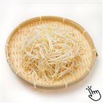 トップバリュ 新潟県などの国内産 黒豆もやし(細もやし)200g 1袋