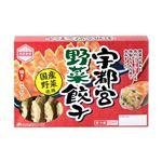 マルシンフーズ 宇都宮野菜餃子 16個(234g)