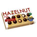 明治 ヘーゼルナッツチョコレート 52g