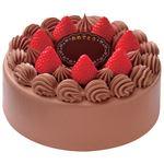 【お祝いケーキ予約】ヤマザキ 生チョコ 6号(直径約18cm)【M0009】