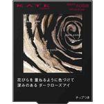 カネボウ化粧品 KATE(ケイト)ダークローズシャドウ BR-1