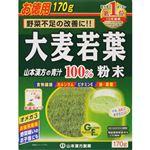 山本漢方製薬 大麦若葉粉末100% 計量タイプ お徳用 170g(85g×2袋)
