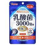 山本漢方製薬 乳酸菌粒 22.5g(250mg×90粒)