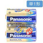 パナソニック エボルタ アルカリ乾電池 単1形 2本