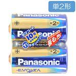 パナソニック エボルタ アルカリ乾電池 単2形 2本