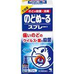 【第3類医薬品】小林製薬 のどぬ~るスプレー 大容量 25ml