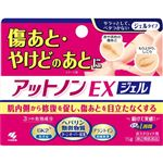 【第2類医薬品】小林製薬 アットノンEX ジェル 15g