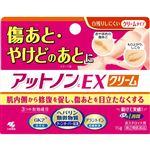 【第2類医薬品】小林製薬 アットノンEX クリーム 15g
