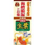 【第3類医薬品】小林製薬 生葉液薬 20g