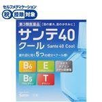【第3類医薬品】参天製薬 サンテ40クール 12ml
