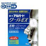 【第2類医薬品】ロート製薬 ロートアルガードクールEX 13ml