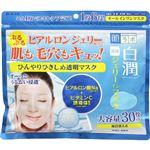 ロート製薬 肌ラボ 白潤 冷感ジェリーインマスク 30枚(350ml)