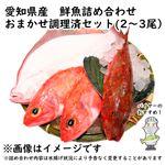 【予約 10/31・11/01配送】 愛知県産 鮮魚詰め合わせ おまかせ調理済セット(2~3尾)