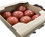 【予約5/1~5/4お届け】岐阜県産 トマト簡易箱(8個入り)1箱