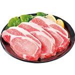 【お買得】国産豚肉ロースとんかつ・ソテー用 2枚 200g(100gあたり(本体)148円)【8/1日 配送分まで】
