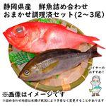 【予約 10/31・11/01配送】 静岡県産 鮮魚詰め合わせ おまかせ調理済セット(2~3尾)