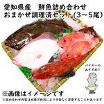 【予約 10/31・11/01配送】 愛知県産 鮮魚詰め合わせ おまかせ調理済セット(3~5尾)