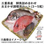 【予約 10/31・11/01配送】 三重県産 鮮魚詰め合わせ おまかせ調理済セット(3~5尾)