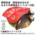 【予約 10/31・11/01配送】 静岡県産 鮮魚詰め合わせ おまかせ調理済セット(3~5尾)
