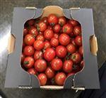 【予約5/1~5/4お届け】熊本県産 ミニトマト簡易箱(1kg)1箱