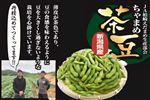 【予約】【8/11(水)~8/15(日)のお届け】 新潟県産 茶豆1kg 1箱