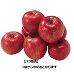 【お買得】青森県または長野県などの国内産サンふじりんご 1個 【1/24日配送分まで】