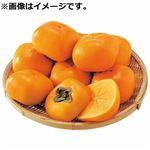【予約10/28~11/3お届け】和歌山県産 たねなし柿簡易箱 3Lサイズ5~6個入り
