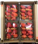 【予約3/10~3/16お届け】愛知県産 紅ほっぺいちご4パック簡易箱 1箱