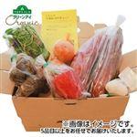 【予約3/13~3/14お届け】各産地 オーガニック畑いろいろBOX 1箱